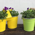 Unique pots and containers make great gifts!
